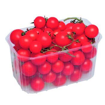 pomodoro ciliegino  gr.500